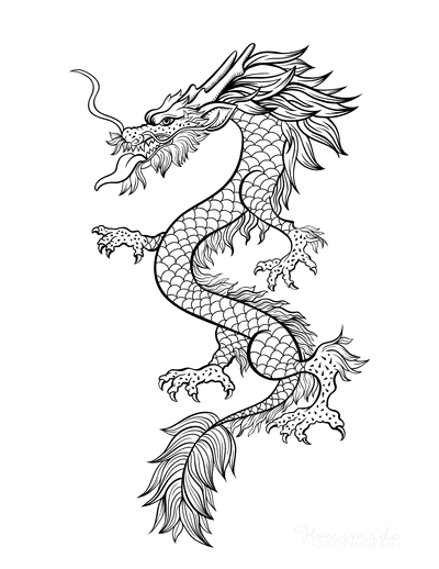 Dragon Coloring Pages Detailed Fire Dragon for Adults