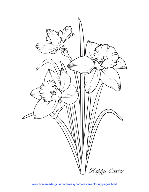 Easter Coloring Pages - daffodils