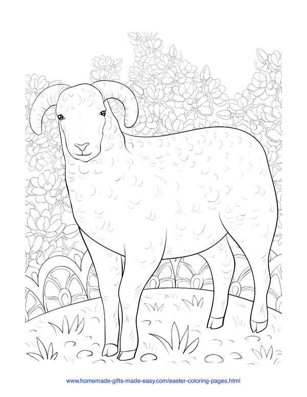 Easter Coloring Pages - spring sheep and flowers intricate doodle