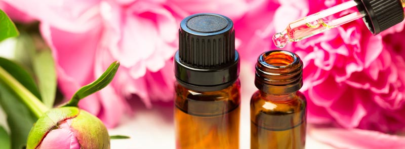 essential oil skin care guide
