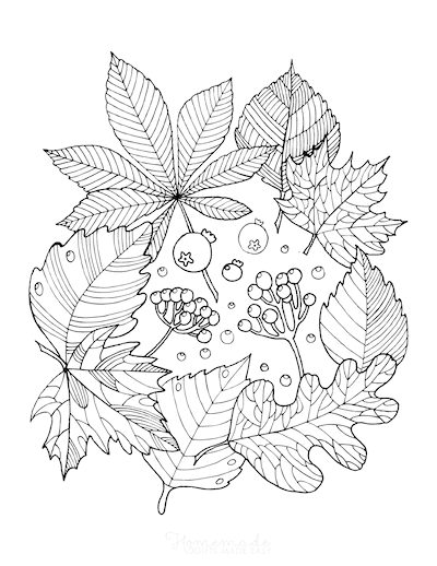 Fall Coloring Pages Autumn Leaf Arrangement