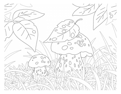 Fall Coloring Pages Mushrooms in Long Grass
