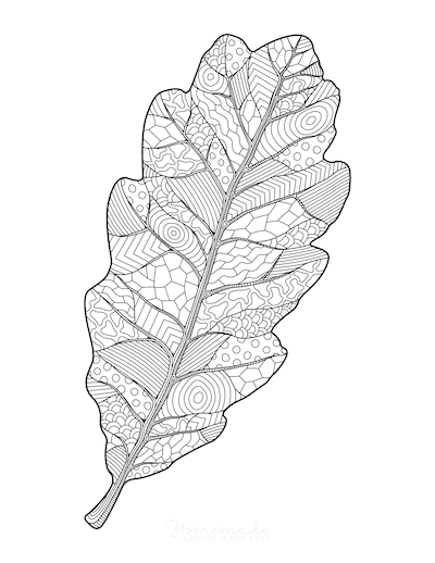 Fall Coloring Pages Oak Leaf Doodle for Adults