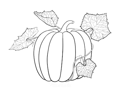 Fall Coloring Pages Pumpkin Patterned Vine Leaves