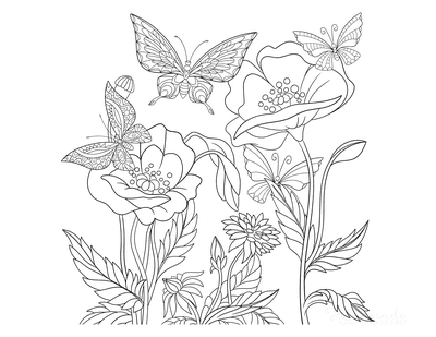 Flower Coloring Pages Butterflies Wild Flowers