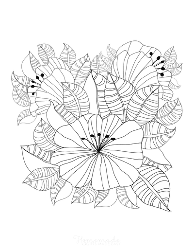 Flower Coloring Pages Detailed Patterned Leaves Flowers