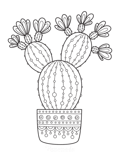 Flower Coloring Pages Flowering Cactus