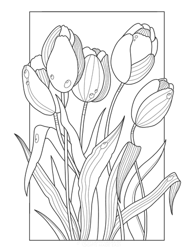Flower Coloring Pages Tulips