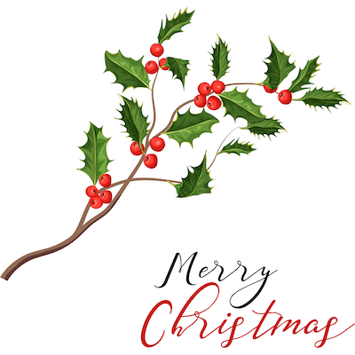 Printable Christmas Cards - Merry Holly Branch