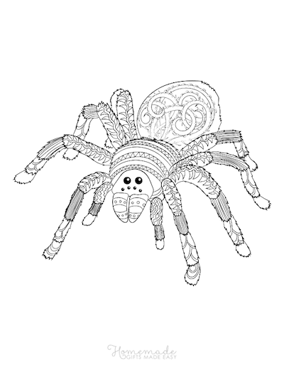 Halloween Coloring Pages Intricate Pattern Spider Adult