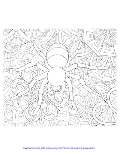Halloween Coloring Pages Spider Intricate Pattern