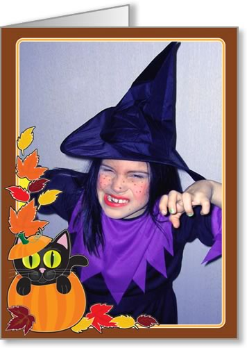 halloween photo cards cat in pumpkin