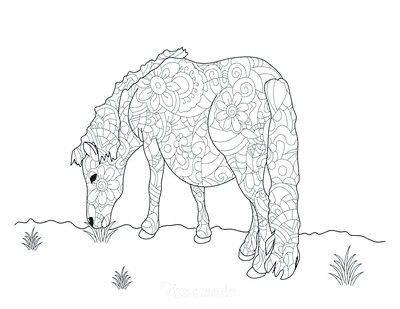 Horse Coloring Pages Decorative Pattern Horse Grazing for Adults