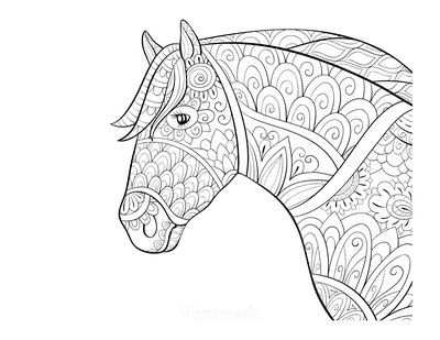 Horse Coloring Pages Decorative Patterned Head