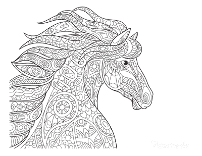 Horse Coloring Pages Detailed Picture Flowing Mane for Adults