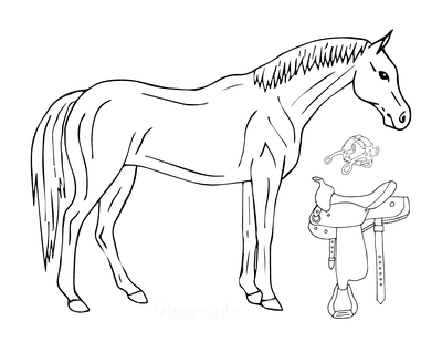 Horse Coloring Pages Horse Saddle Halter