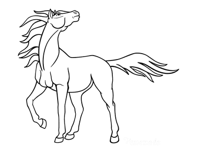 Horse Coloring Pages Majestic Outline