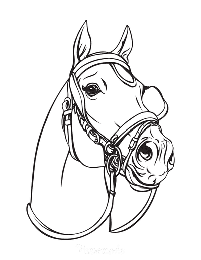 Horse Coloring Pages Realistic Horse Head Wearing Bridle