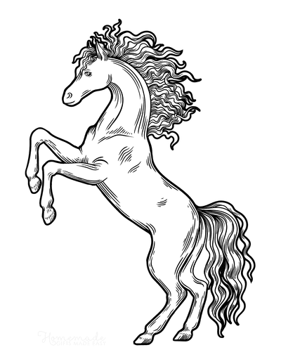 Horse Coloring Pages Rearing Sketch