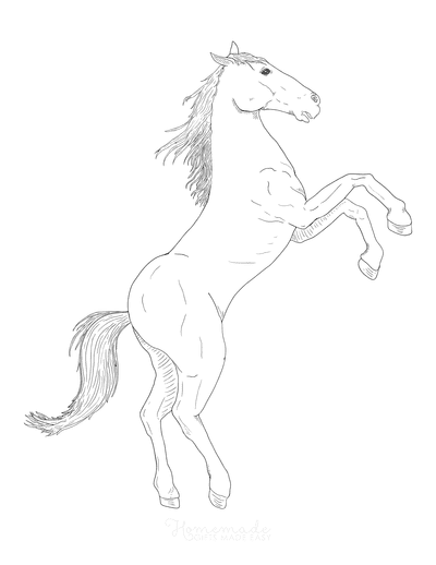 Horse Coloring Pages Sketch Majestic Rearing