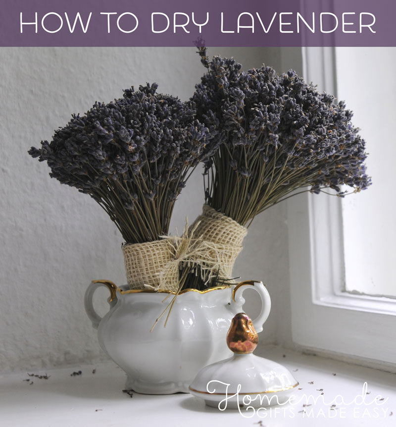 lavender crafts drying lavender