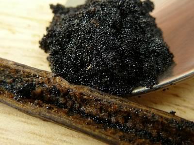 how to make vanilla extract - caviar closeup