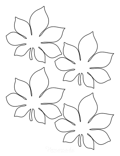 Leaf Template Chestnut Small