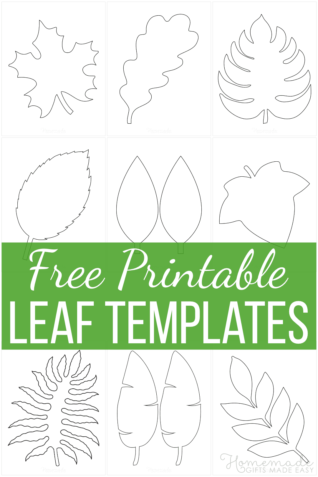 21 Free Leaf Templates - Printable Outlines of Maple, Oak etc for Kids  Crafts