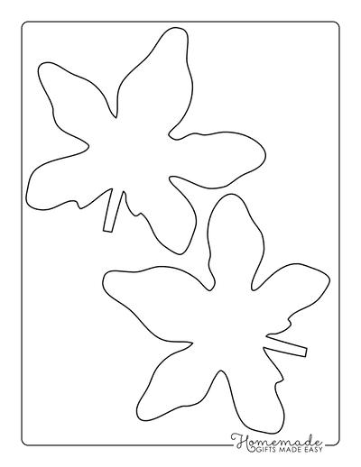 Leaf Template Star Shaped Medium