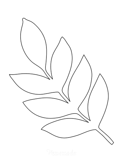Leaf Template Tropical Compound Large