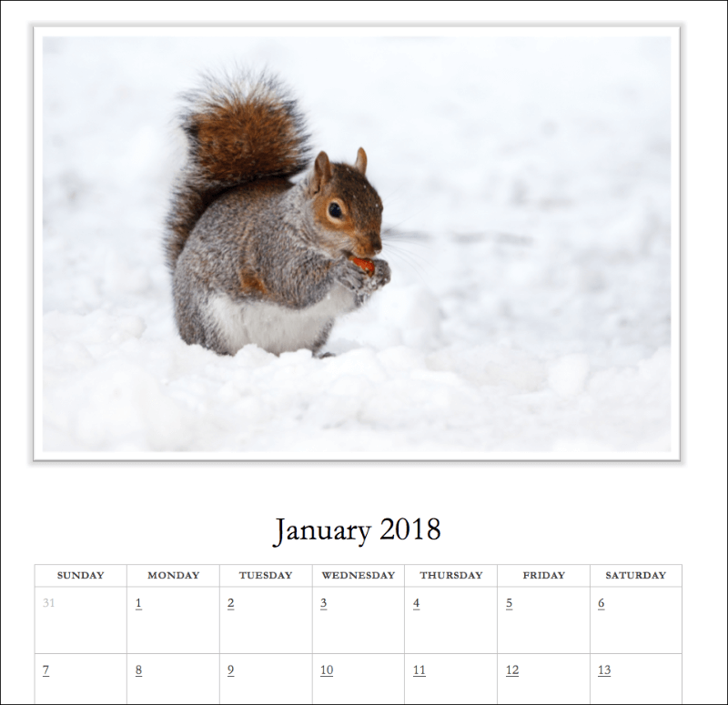 Free 2019 + 2020 Photo Calendar Template for Microsoft Word