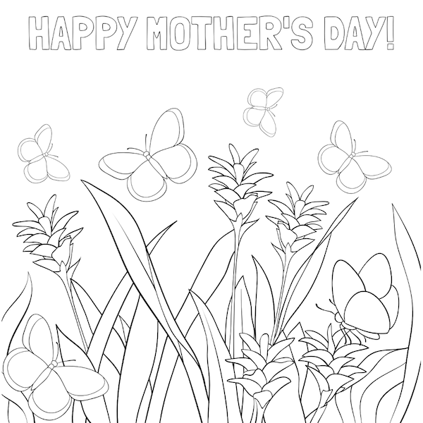 free printable mothers day cards - flowers and butterflies coloring
