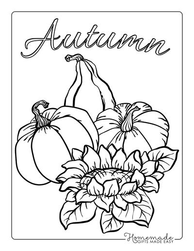 Pumpkin Coloring Pages 3 Squash Pumpkins Flower