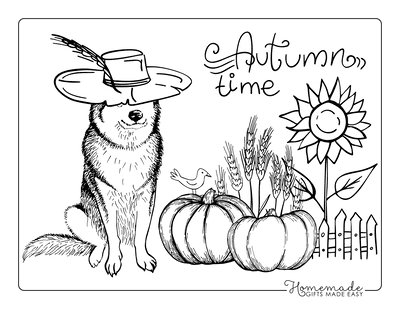 Pumpkin Coloring Pages Autumn Time Pumpkins Harvest Dog Hat