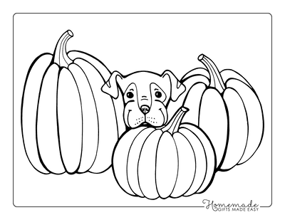 Pumpkin Coloring Pages Cute Puppy Dog With 3 Pumpkins