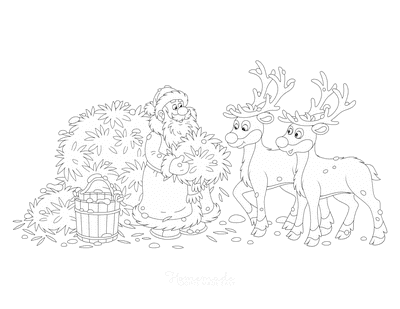 Santa Coloring Pages Father Christmas Feeding Reindeer Hay