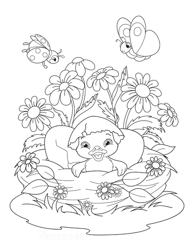 Spring Coloring Pages Cute Bird Hatching Nest Flowers