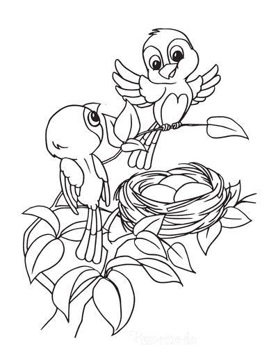 Spring Coloring Pages Cute Birds Tree Nest
