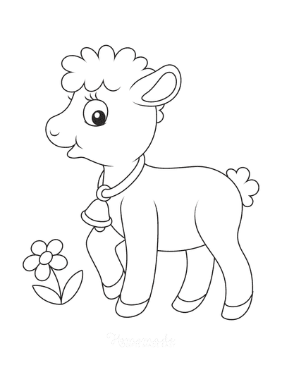 Spring Coloring Pages Cute Lamb Preschoolers