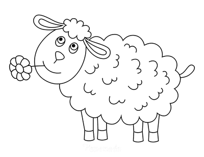 Spring Coloring Pages Cute Sheep Flower