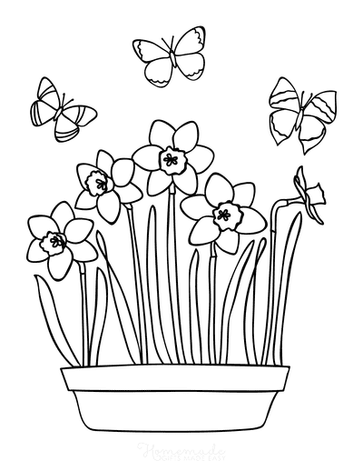Spring Coloring Pages Daffodils Butterflies