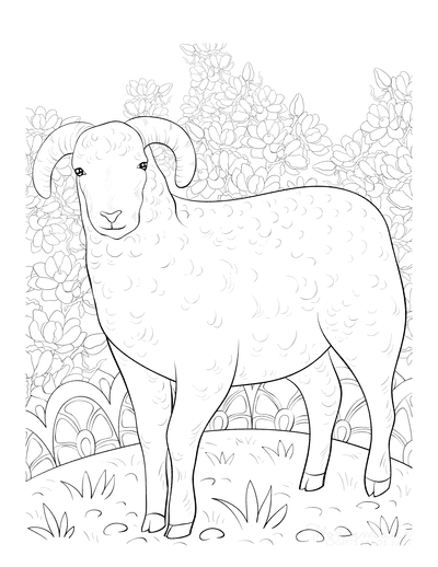 Spring Coloring Pages Detailed Lamb Drawing