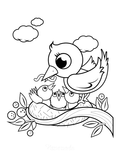 Spring Coloring Pages Mother Bird Feeding Chicks Nest