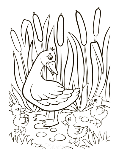 Spring Coloring Pages Mother Duck Ducklings Reeds