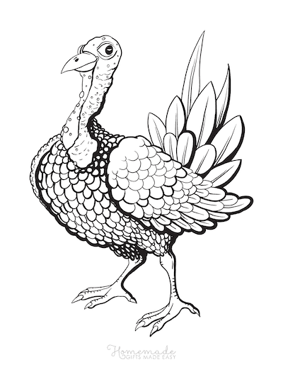 Thanksgiving Coloring Pages Turkey Bumpy Neck