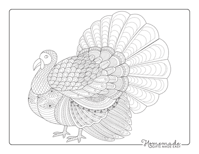 Thanksgiving Coloring Pages Turkey Zentangle for Adults