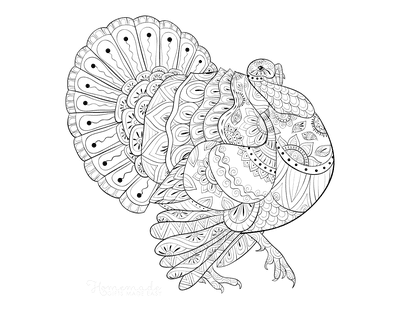 Turkey Coloring Pages Detailed Patterned Walking Turkey