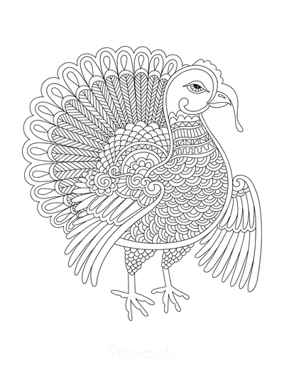 Turkey Coloring Pages Detailed Turkey for Adults to Color