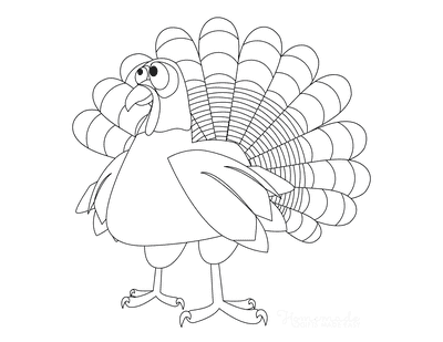 Turkey Coloring Pages Simple Line Drawing