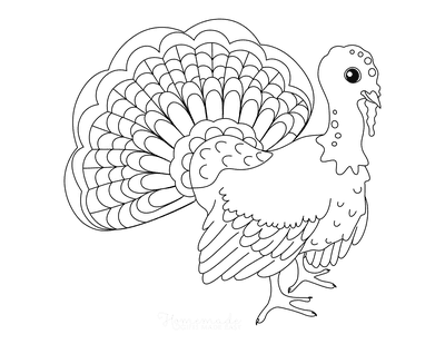 Turkey Coloring Pages Turkey With Fanned Feathers